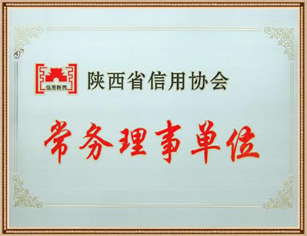 陕西省信用协会常务理事单位