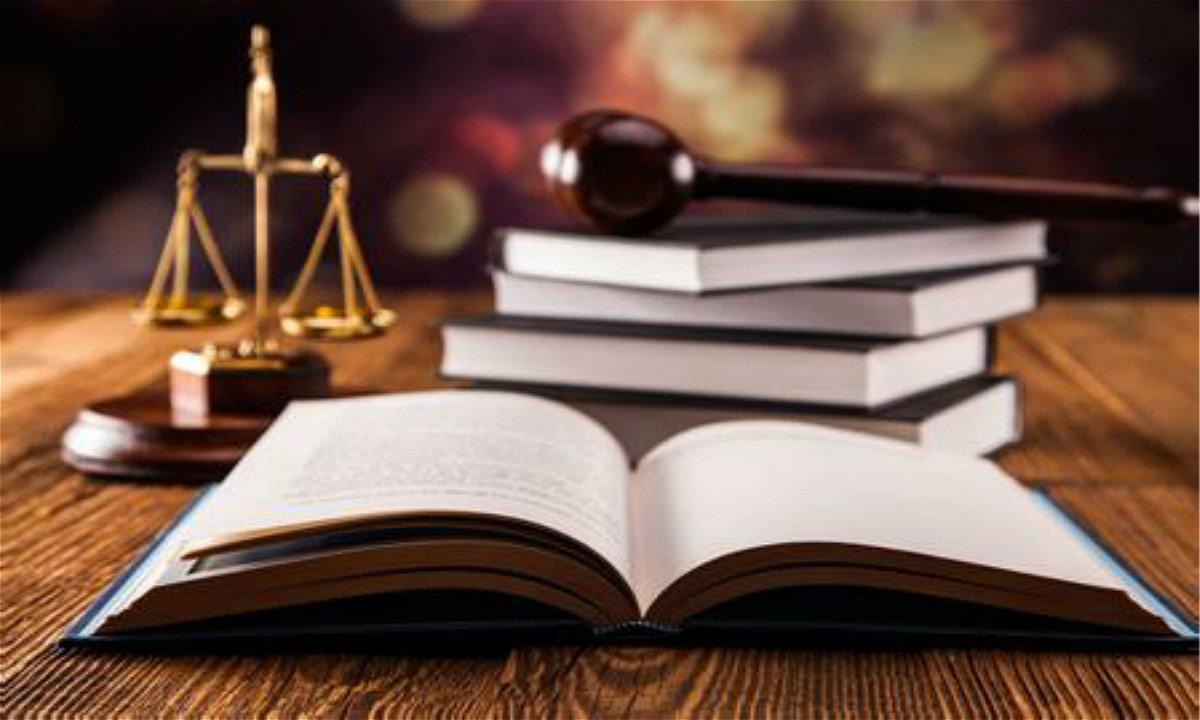 """在法律的""""广角镜""""下看分公司是否具备政采供应商资格"""